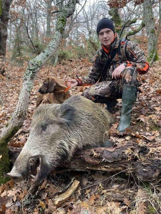 boars-image-3 (1)