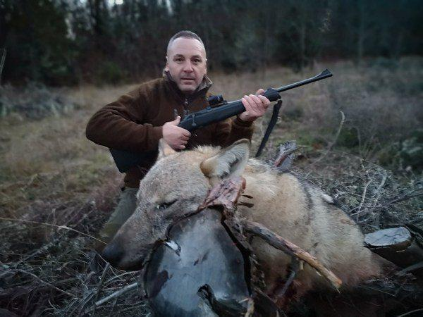 predators-hunting-image-2