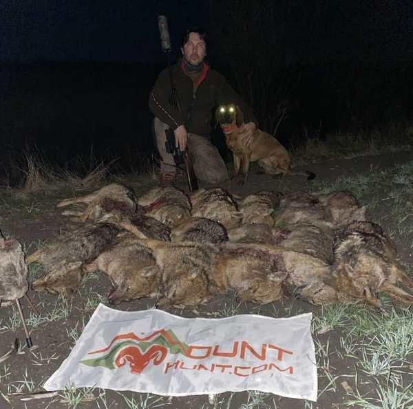 predators-hunting-image-6