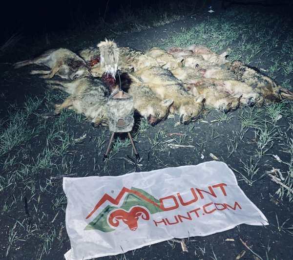predators-hunting-image-7